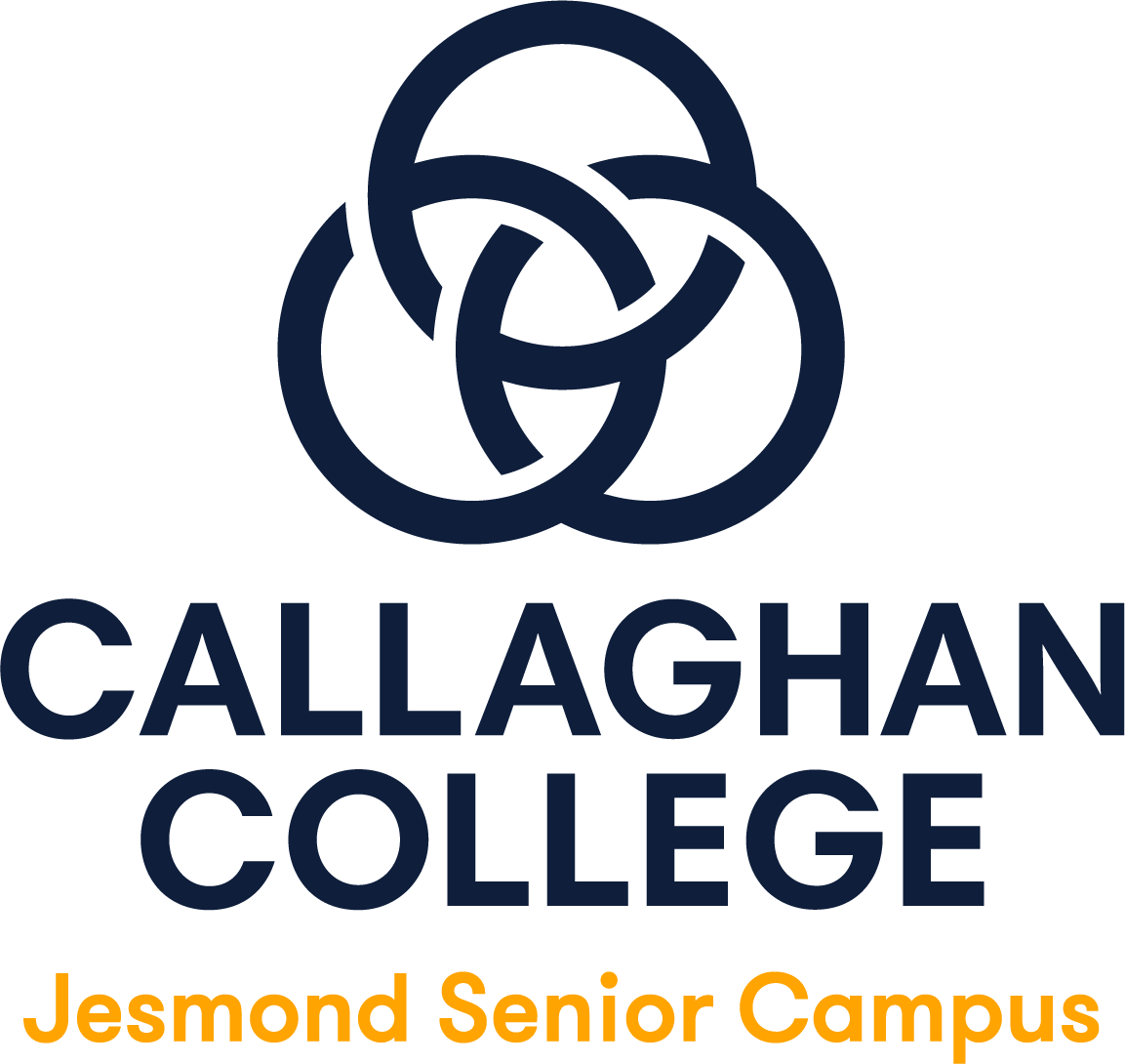 Callaghan College Jesmond Senior Campus logo